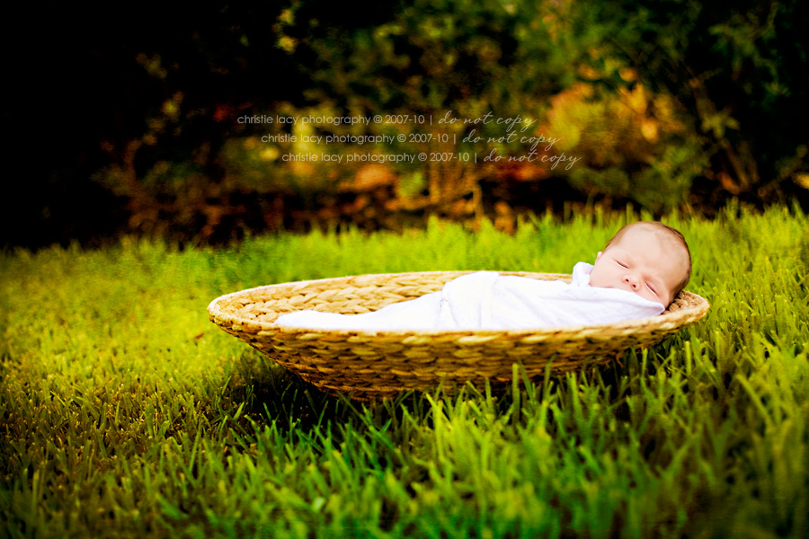 Christie Lacy Photography Houston newborn baby Portraits_006.jpg