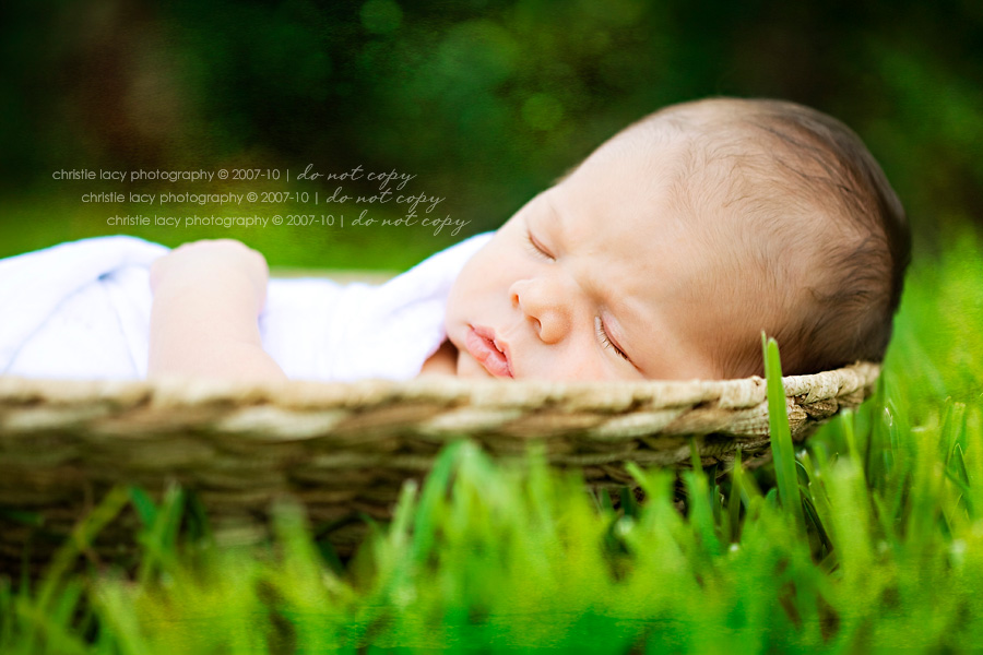 Christie Lacy Photography Houston newborn baby Portraits_018.jpg