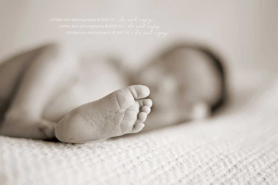 Christie Lacy Photography Houston newborn baby Portraits_019.jpg