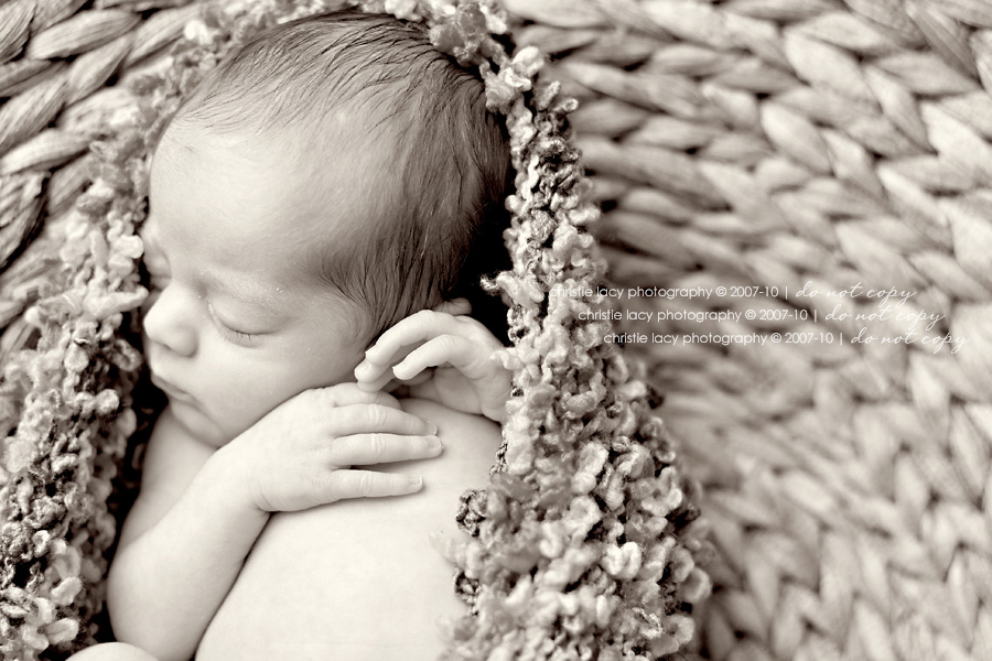 Christie Lacy Photography Houston newborn baby Portraits_022.jpg