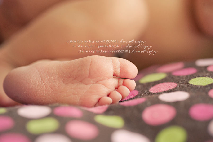 Christie Lacy Photography Houston newborn baby Portraits_033.jpg