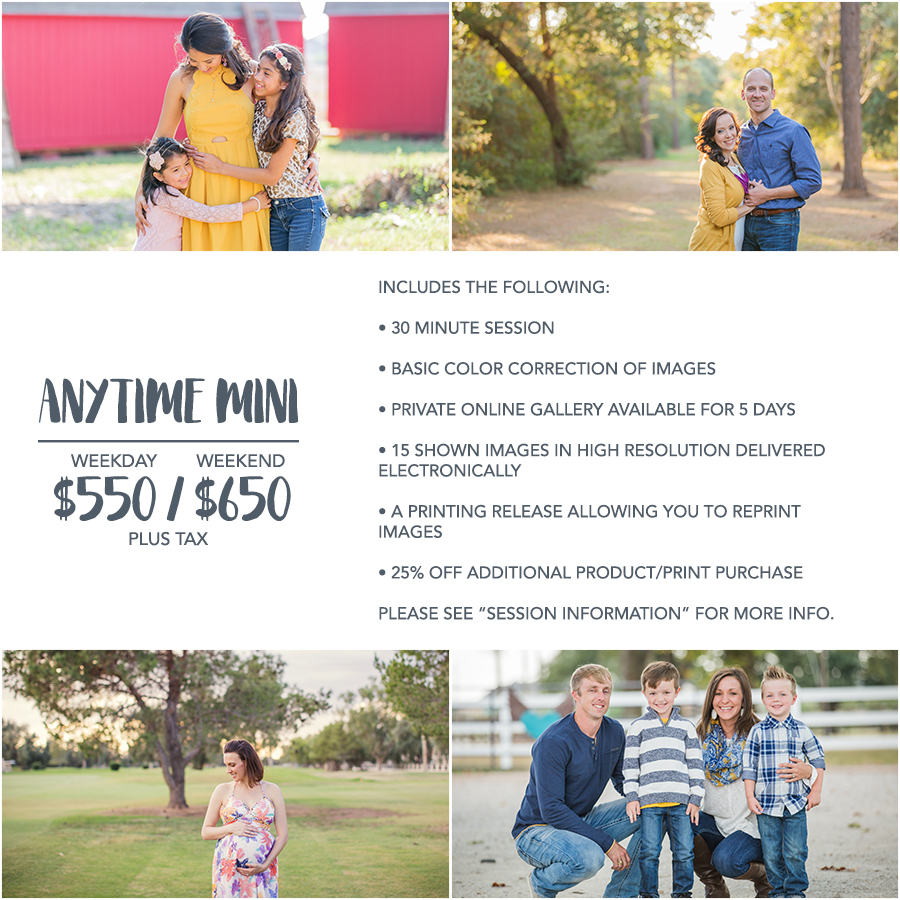anytimemini1-houston-family-photography